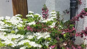 Ambiance Et Jardin Accueil Ambiance Parcs U0026 Jardins Paysagiste à Beaune Et Environs
