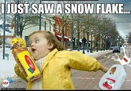 Flake Meme - phish net northeast blizzard memes
