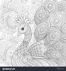 peacock zentangle style antistress coloring stock vector