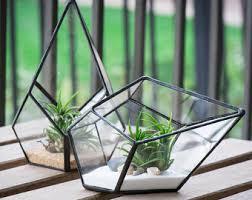 geometric terrarium etsy