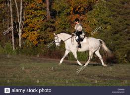 halloween horse masked woman in halloween costume riding gray horse in countryside
