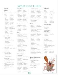 foods to eat while dieting list 28 images the world s catalog