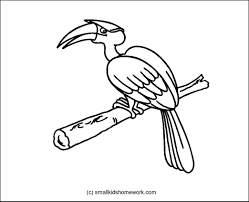 birds outline pictures and coloring pages for little kids
