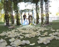 las vegas wedding packages all inclusive cheap all inclusive las vegas wedding ceremony and reception packages
