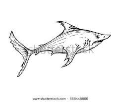 big shark saltwater fish tattoo totem stock vector 568450669