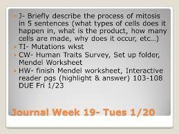 meiosis compare u0026 contrast mitosis u0026 meiosis journal week 19 mon