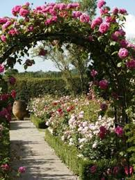 rose garden ideas pictures u2013 home design and decorating