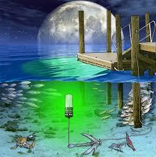 underwater led dock lights hydro glow seafloor sf100g underwater led dock lighting green fish light