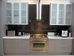 Decorative Cabinet Glass Panels by Kitchen Decorative Cabinet Doors Shaker Style Cabinet Doors