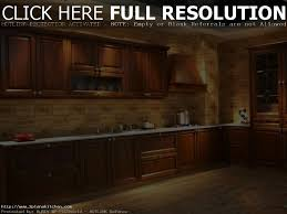 Best Wood For Painted Kitchen Cabinets Best Wood Kitchen Cabinets Home Decoration Ideas
