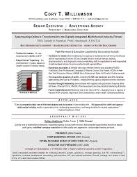 Marketing Executive Resume Sample by Senior Sales Marketing Executive Resume Example Essaymafia Com