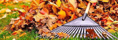 best leaf blowers and tips for fall leaf removal consumer reports