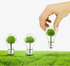 holding a light bulb tree bulb big png image for free