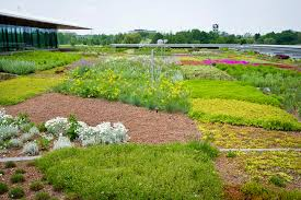 Chicago Botanic Garden Membership Go Green With A Living Roof Midwest Living
