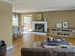 Elegant Living Room Color Schemes by Great Combination Ideas For Interior House Paint Colors Living