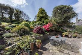 native plants of ireland a warm glow inside and great views out from the hill of howth for