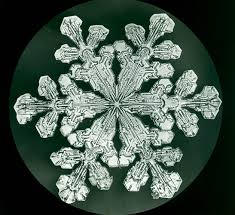 snowflake wilson bentley the bentley collection image 0507