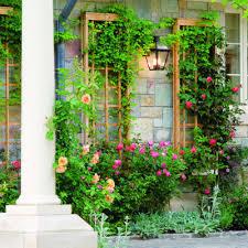 Diy Garden Trellis Ideas Download Wall Trellis Ideas Solidaria Garden