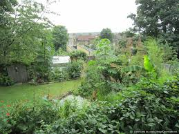 vauxhall gardens london 24 grove park camberwell london se5 8lh u2013 national garden scheme