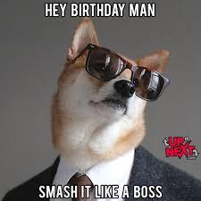 Corgi Birthday Meme - happy birthday boss meme 20 funny boss birthday memes images
