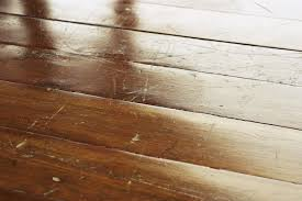 nails how to keep dogs nails from scratching hardwood floors on