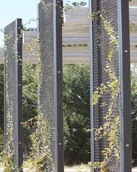 Metal Garden Trellis Uk Best 25 Metal Trellis Ideas On Pinterest Metal Arbor Metal