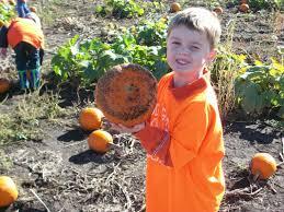 pumpkin patch god u0027s garden preschool