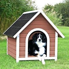 cool dog houses dog house ideas cool dog house ideas creative colorful dog outdoor