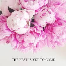 instagram pinkpeonies pink peonies the pink diary peonies pinterest peony