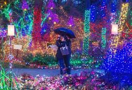 Vandusen Botanical Garden Lights In The Garden Let There Be Lights Millions Of Lights