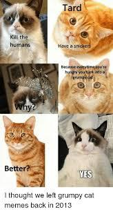 Tard The Grumpy Cat Meme - 25 best memes about grumpy cat memes grumpy cat memes