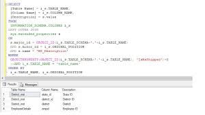 how to view table in sql getting table column with description in sql server