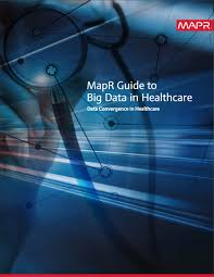 big data literature mapr