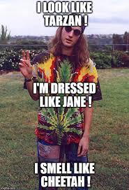 Hippie Memes - hippie imgflip