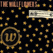 wall flowers the wallflowers biography albums links allmusic