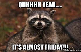 Almost Friday Meme - ohhhhh yeah it s almost friday evil plotting raccoon
