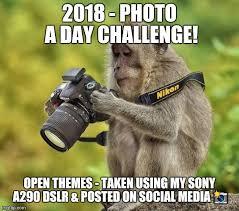 Meme Photographer - photographer monkey latest memes imgflip