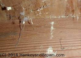 Powder Post Beetles In Hardwood Floors - troubled houses structure ashi home inspector serving minneapolis
