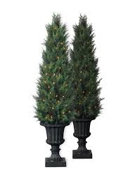 Preserved Boxwood Topiary Trees Decorating Baby Cypress Potted Artificial Topiary Trees Idea