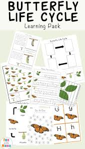 432 best unit ideas insects u0026 bugs images on pinterest insect