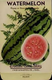seed packets the promise of seeds magic in a packet watermelon seed packets