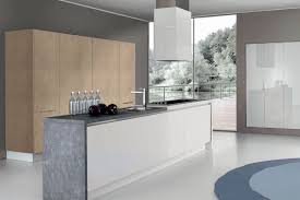 kitchen cabinets modern modern kitchen cabinets european cabinets design studios