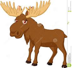 moose pictures kids search