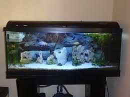 ideas about aquarium led lighting on pinterest gallon salt water