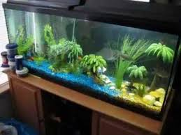 creative diy fish tank decor ideas