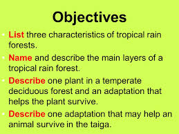 Tropical Rainforest Plant Species List - chapter 6 section 2 forest biomes ppt video online download