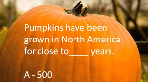 pumpkin facts and quiz youtube