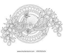 black and white peacock pattern vector download free vector art