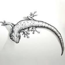 songbird tattoo sketches