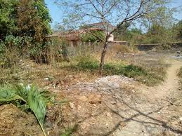 residential plot land for sale in kunegaon lonavala p76694968
